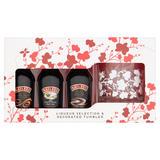 Baileys Liqueur Selection & Decorated Tumbler