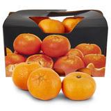 Easy Peelers Citrus Box 900g