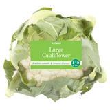 Iceland Large Cauliflower
